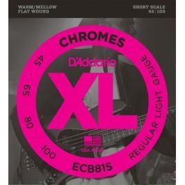 D'Addario ECB 81S Chromes Bass Regular Light 45-100