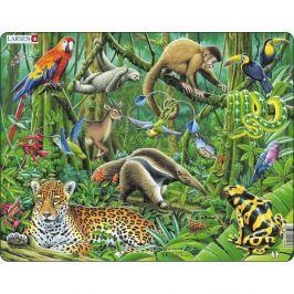 Larsen Puzzle Lasy deszczowe w Ameryce Płd., 70 części