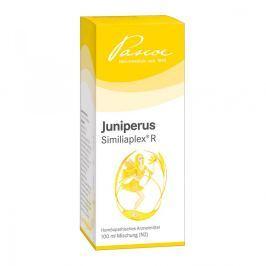 Juniperus Similiaplex R Tropfen