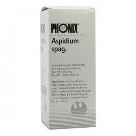 Phoenix Aspidium spag. Tropfen