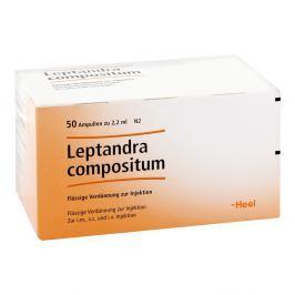 Leptandra Comp. Amp.