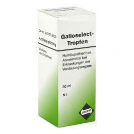 Galloselect Tropfen