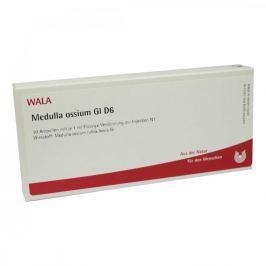 Medulla Ossium Gl D 6 Amp.