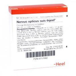 Nervus Opticus suis Injeel ampułki