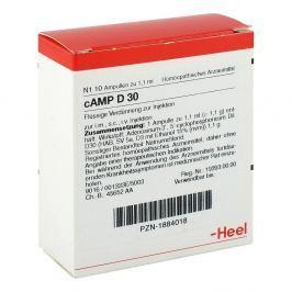 Camp D 30 Amp.