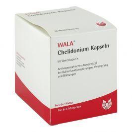 Wala Chelidonium kapsułki