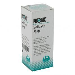 Phoenix Solidago spag. Tropfen