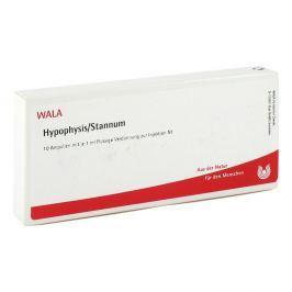 Hypophysis/stannum Amp.