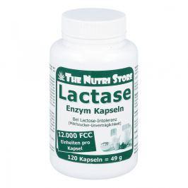 Lactase 12000 Fcc Enzym Kapseln