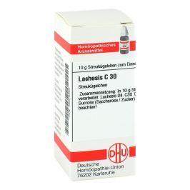 Lachesis C 30 Globuli