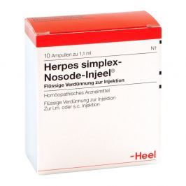 Herpes Simplex Nosoden Injeele Medycyna naturalna
