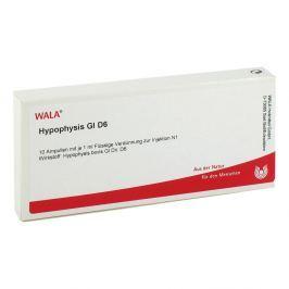 Hypophysis Gl D 6 Amp.