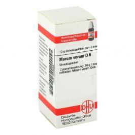 Marum Verum D 6 Globuli Medycyna naturalna