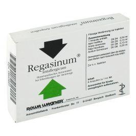 Regasinum Antallergicum Amp.