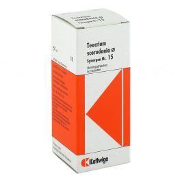 Synergon 15 Teucrium Urtinktur Medycyna naturalna