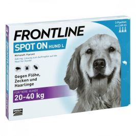 Frontline Spot 20-40 roztwór dla psów, pipetka