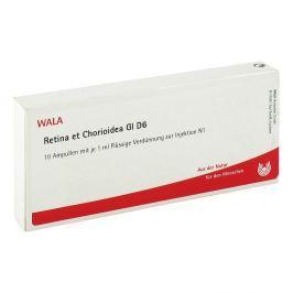 Retina Et Chorioidea Gl D 6 Amp.