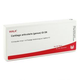 Cartilago Artic. Genus Gl D 6 Amp.