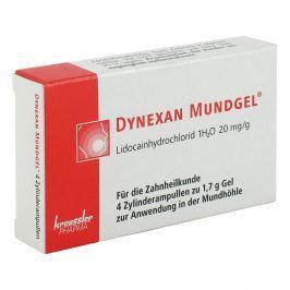 Dynexan Mundgel Zylinderamp.