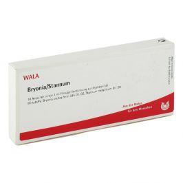 Bryonia Stannum Amp.