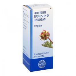 Poterium Spinos. Urtinktur D 1