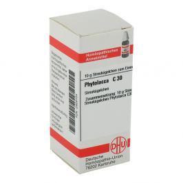 Phytolacca C 30 Globuli